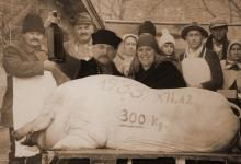 Disznótor a Tisza-tónál