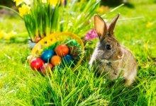 Húsvét és tavaszi szünet, 3 éj